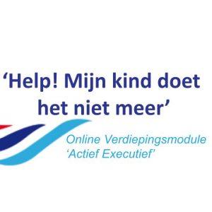 Online Module: Help! Mijn Kind Doet Het Niet Meer. Actief Executief (door Maureen Kramer-Tinnemeijer)